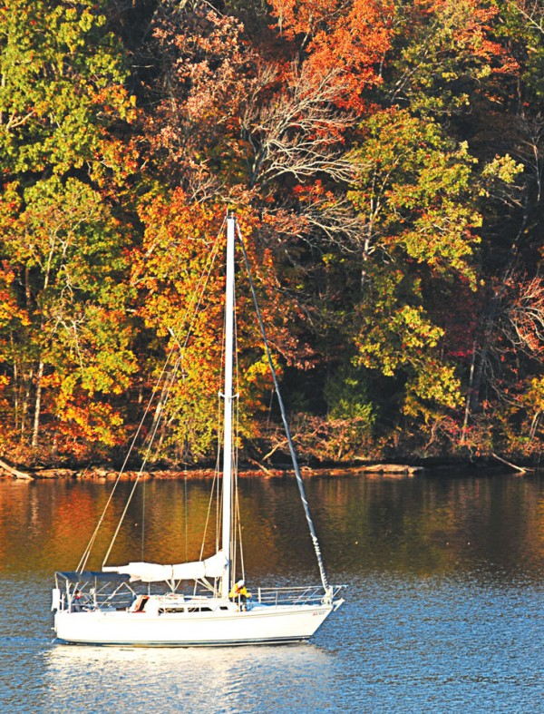 SailBoat-in-the-Fall-Crop-(2)