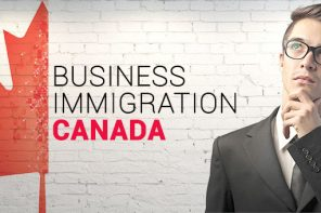 Immigration Pathways for Business Owners and Managers